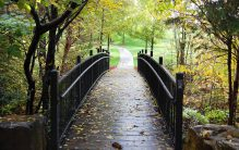 Walking Trail at The Ballantyne Charlotte