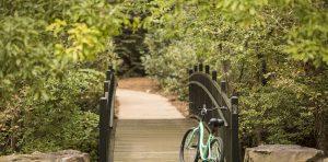 Walking And Biking Pathway at The Ballantyne, Charlotte