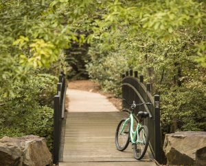 Walking And Biking Pathway at The Ballantyne, Charlotte